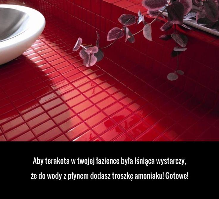 Aby terakota w Twojej łazience była lśniąca...