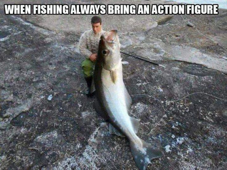 When fishing always bring an action figure.