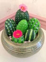 Image result for rock cactus garden
