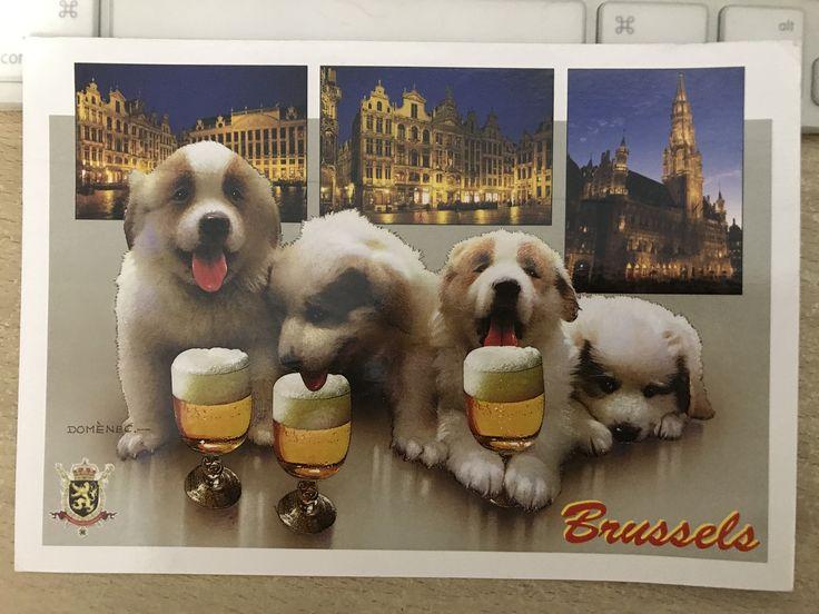 From Belgium 20170427.