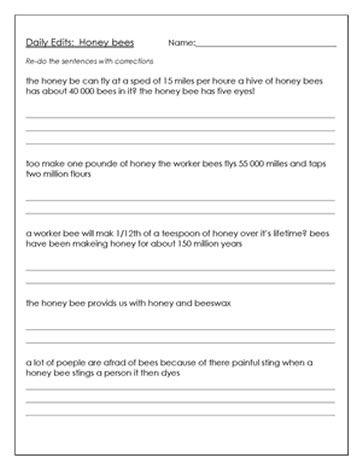 daily paragraph editing grade 3 pdf
