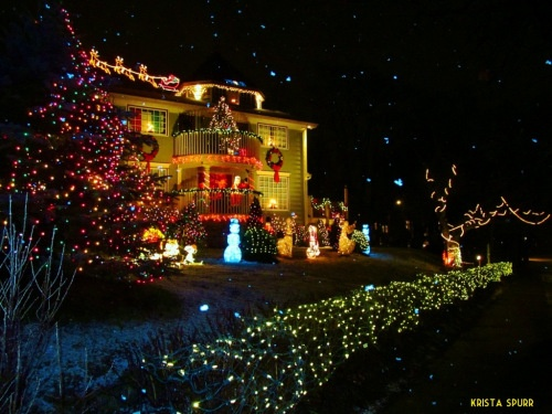 Halifax Nova Scotia Christmas lights