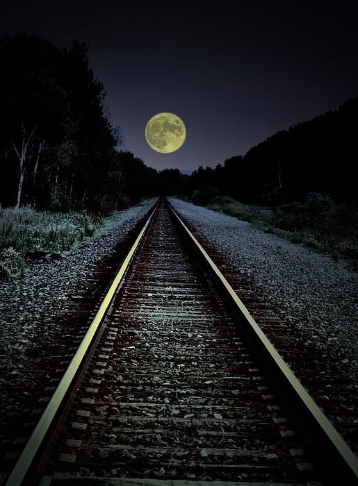 """Track To The Moon"" - This beautiful photograph was taken by Emily Stauring.  It shows the railroad tracks to a full moon."