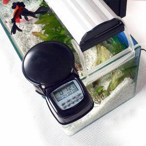Alimentador Automático para Peixes e Preços