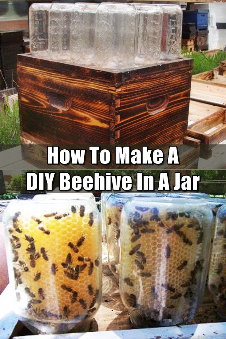 How To Make A DIY Beehive In A Jar