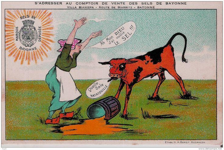 D64 - Carte Publicitaire -  SELS DE BAYONNE  - Villa BIAHIZPA Route De Biarritz - BAYONNE - Bayonne