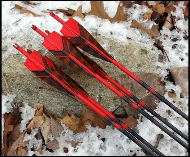 36 Best Bows I Shoot Or Would Like To Images On