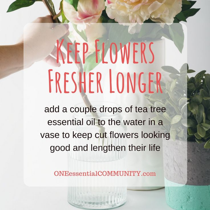 Love this essential oil tip for prolonging the life of fresh-cut flowers! So simple and works great.