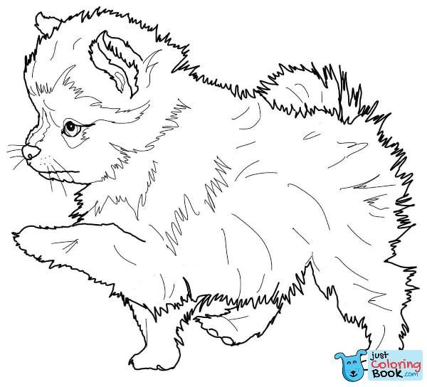 Golden Retriever Puppy Coloring Page Puppy Coloring Pages Coloring Pages Marvel Coloring