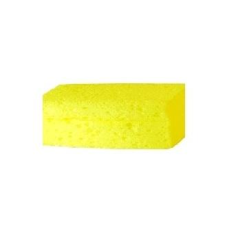 a small sponge