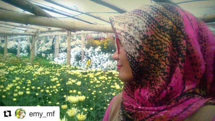 #Repost @emy_mf with @repostapp ・・・ Bahagiaku melihatmu bunga-bunga tumbuh berkembang warna warni nan cantik-cantik. ������������������ Di @kampungkrisanclapar bunganya sebanyak ini lhoh ! ���� Kebun bunga luas, kebun bunga yang di kunjungi ada 3 pos lhoh 3 pos!!! ���� Yakin nih masih mau milih pergi ke kebun bunga tetangga yang cuma 1 pos ������ . . . . . . #wisatasemarang  #exploresemarang  #jatengeksis #wisatakebunbunga #kampungkrisanclapar #kampungkrisangemahripah…