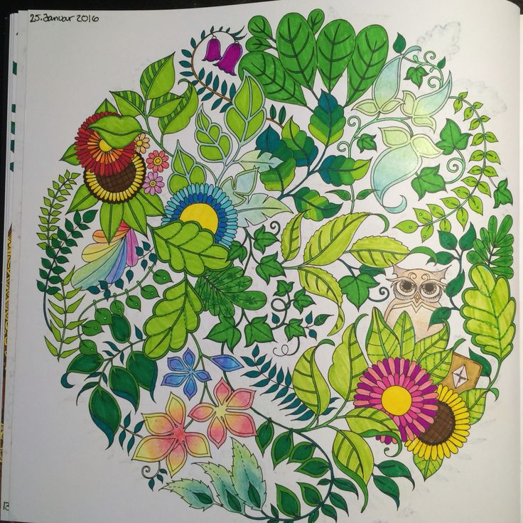 Circle with flowers, and owl and lots of flowers From Johanna Basfords 'enchated forest'