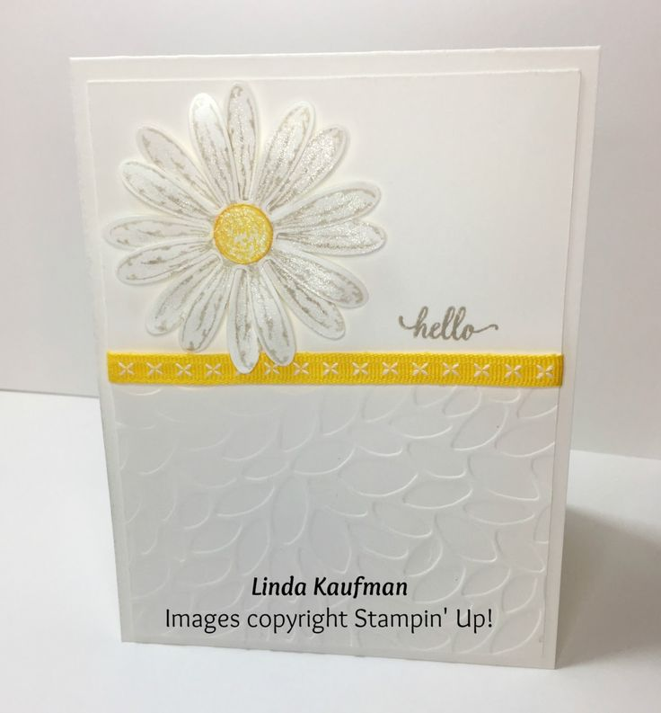 I just got my pre-order of the new products from the 2017-2018 Stampin' Up! Annual Catalog in, so I HAD to play! If you are my regular cust...