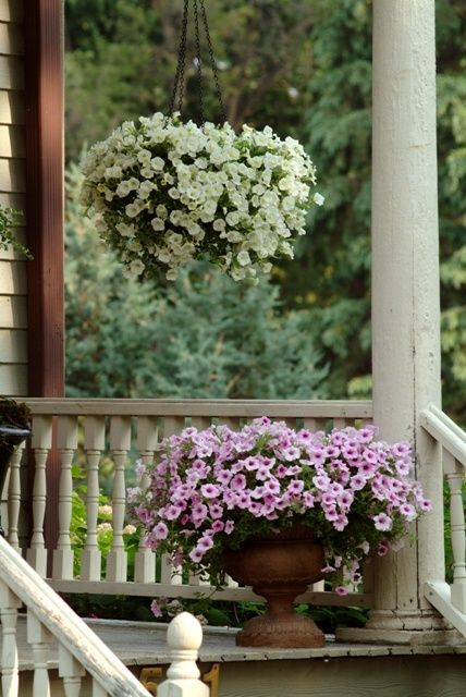 23 Best Images About Carporch On Pinterest Iron Gates