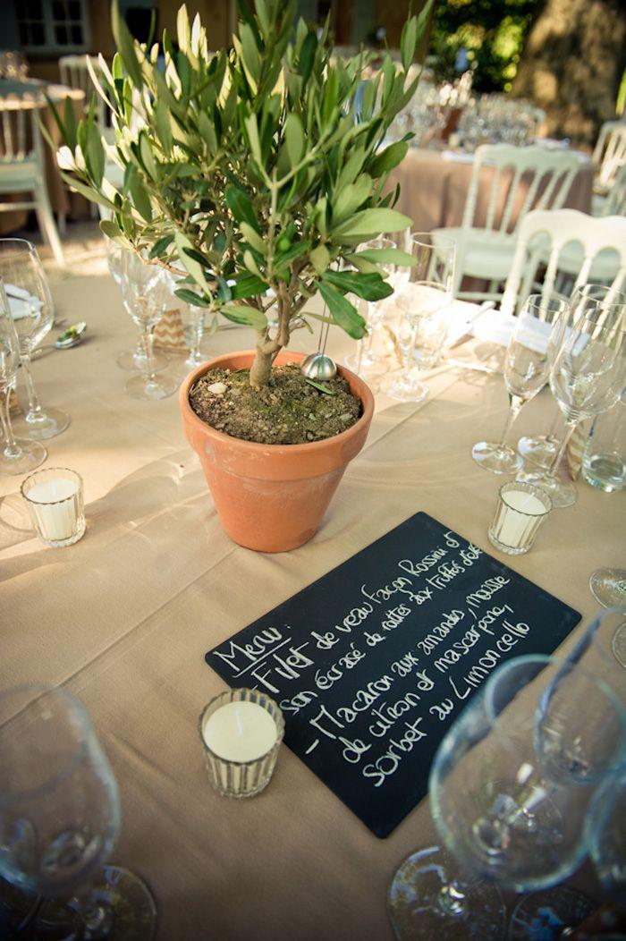 Idée pour décoration de table, mini olivier