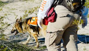 Kestrel Weather & Environmental Meters for search and rescue efforts.