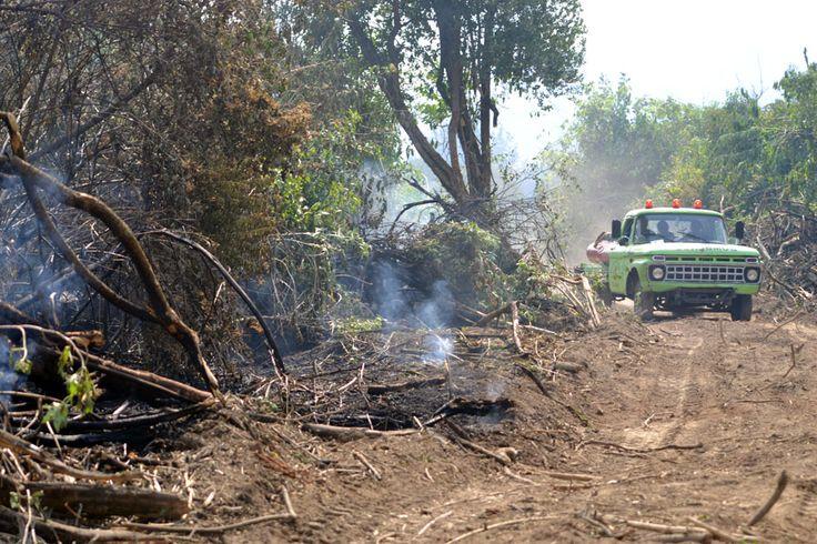 """Combaten el fuego que provoca indignación y desazón por su inicio de carácter intencional http://www.ambitosur.com.ar/combaten-el-fuego-que-provoca-indignacion-y-desazon-por-su-inicio-de-caracter-intencional/ El intendente de El Hoyo, Mirco Szudruk, en dialogo con la prensa, describió la situación del incendio en paraje El Desemboque como """"complicada en un contexto similar del vivido hacer tres años atrás.     Se trabaja mucho todos los muchachos están haciendo un g"""