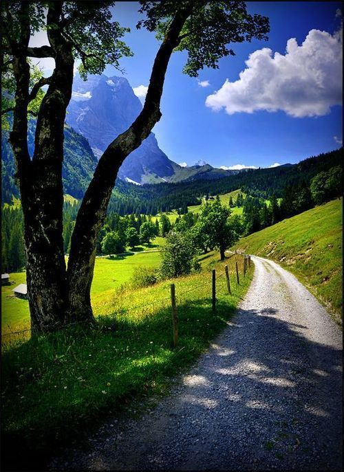 Mountain Valley, Bern, Switzerland #beautiful #nature #switzerland #valley #mountain