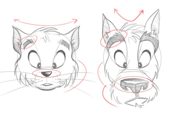 Tips for drawing cartoon animals