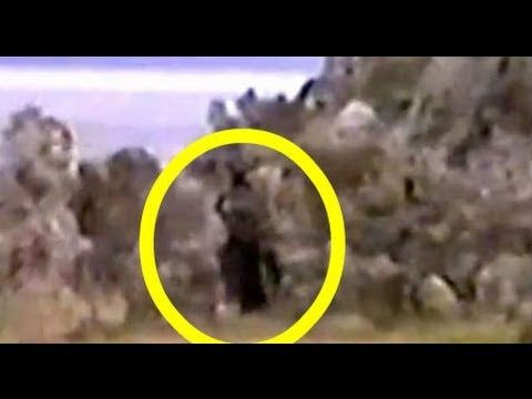 ▶ Researchers Examine The Mono Lake Bigfoot Footage In The Sierras (Documentary) - YouTube