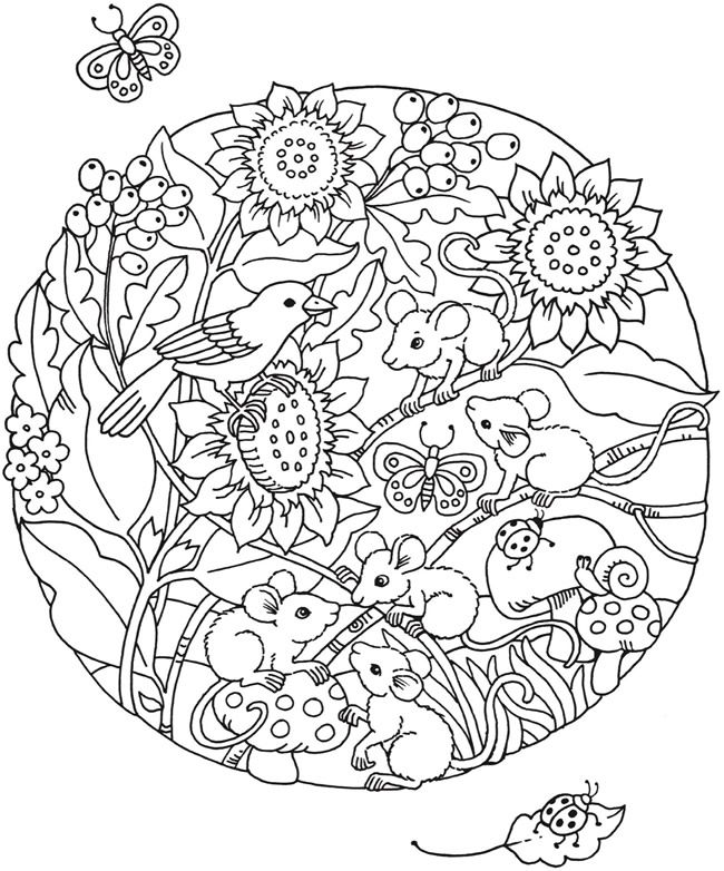 Welcome to Dover Publications - SPARK Circles of Fun Animals