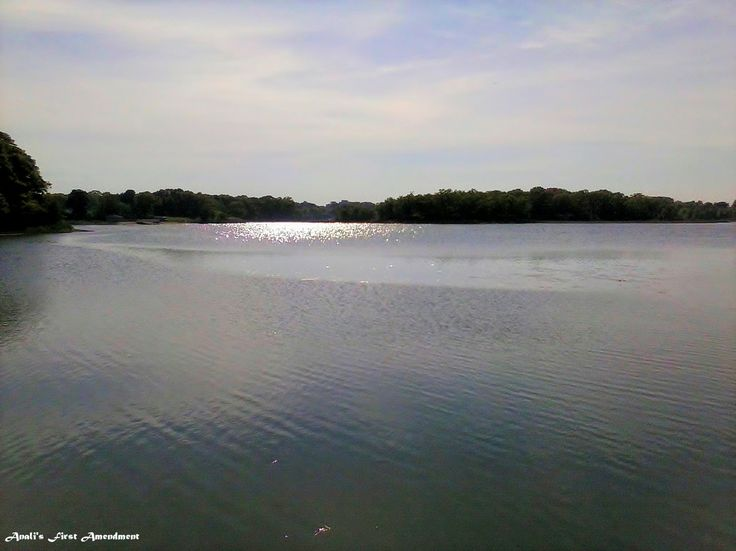 Tranquil Scenes: Across The Street From Wollaston Beach in Quincy, MA.