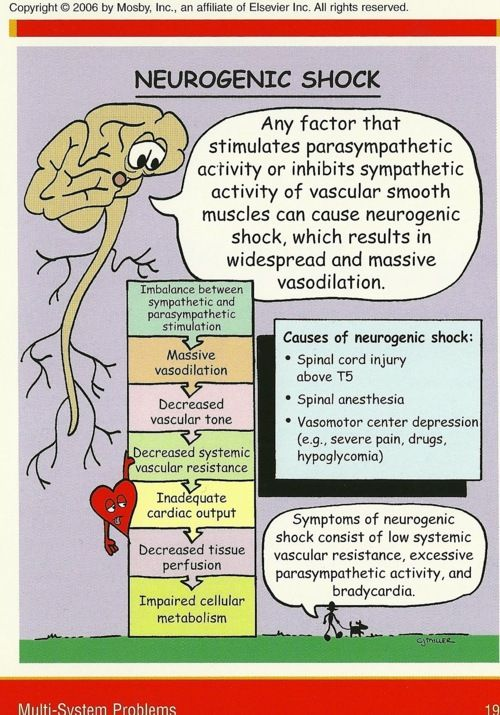 neurogenic shock ~ massive vasodilation. The flood gates are open and we are drowning w/o perfusion.