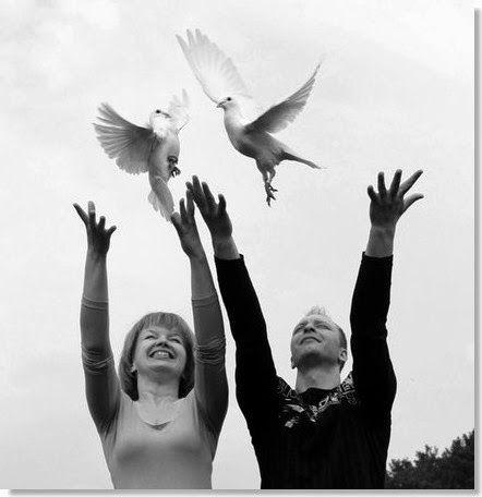 Palomas blancas para eventos - Palomas mensajeras