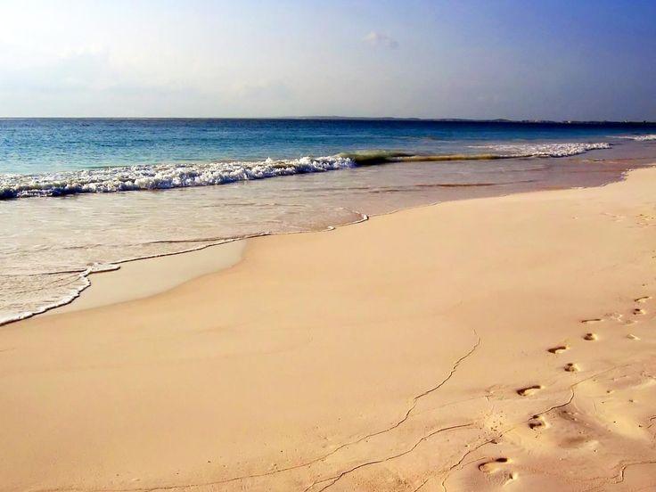 Dune am Strandweg mit der Sandbank im Hintergrund / Langeoog ...