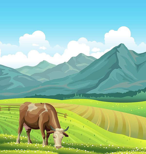 Cartoon Cow And Rural Meadow With Green Grass On The Mountain Background Natural Landscape Vecto By Caids Ados In 2020 Mountain Background Cow Illustration Cartoon Cow