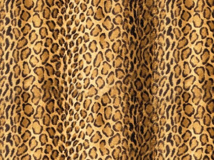wild animal print wallpaper - photo #39