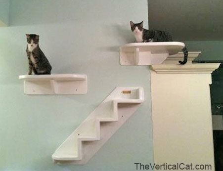 Wrap Around Corner Cat Shelf By Theverticalcat On Etsy