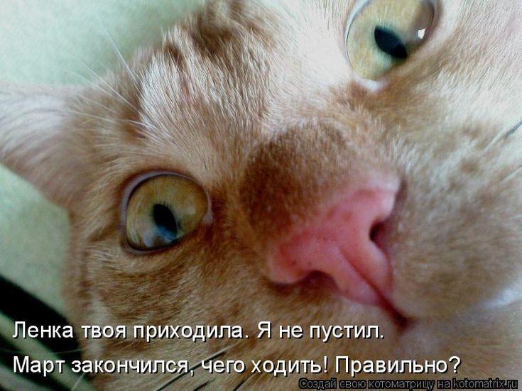 Прикольные картинки спите что ли, день