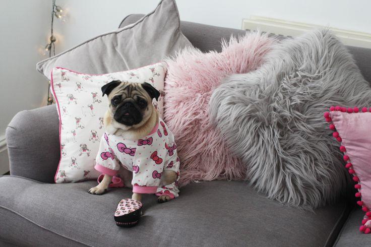 Tangle Teezer Pug Love