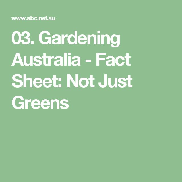 03. Not Just Greens