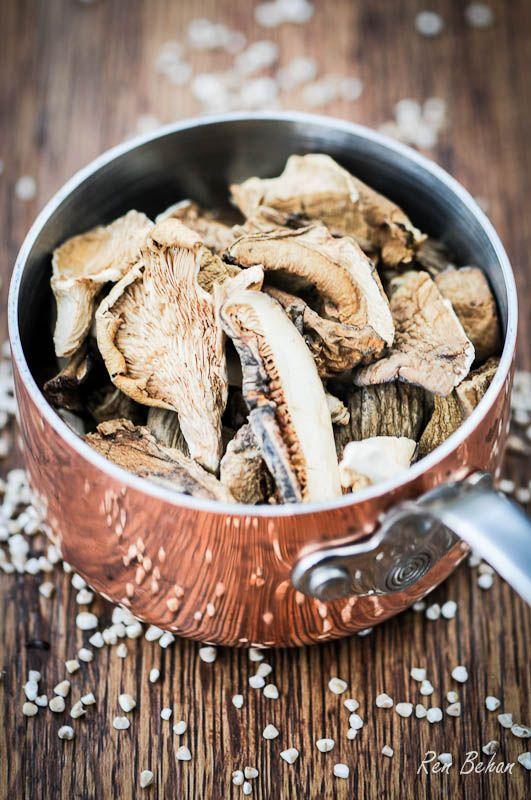 Great Recipe for Polish Wild Mushroom Soup!