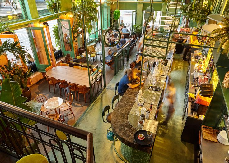 Quirky-Chic Amsterdam Restaurant Brings Elements of Rainforest Indoors - Curbed