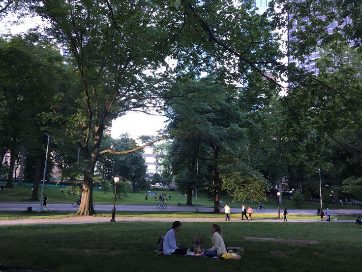 Central Park N.Y