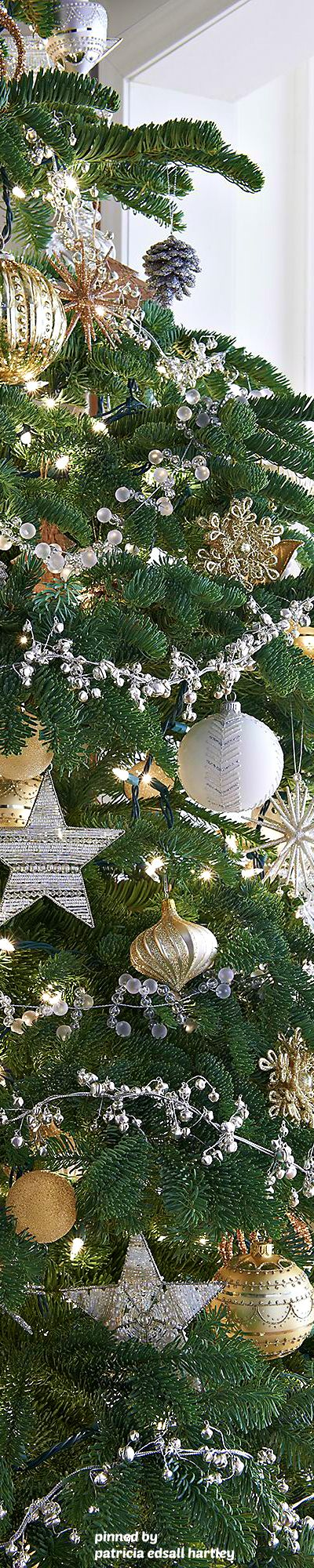 1523 best Trees, Wreaths, Garland, & More images on Pinterest ...