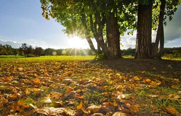 Szép indián nyarunk van az idén. Ne felejtsetek el kimozdulni kicsit, és a szabadban is eltölteni néhány órát! www.polokozpont.hu