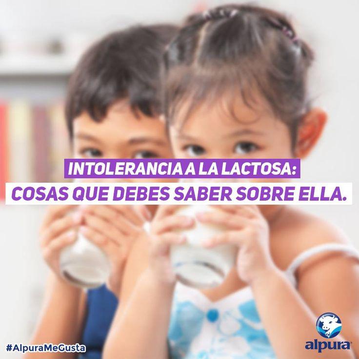 ¿Dejaste de tomar leche porque te cae mal al estómago? Aprende más de esta condición y #ReenamorateConAlpura de la leche deslactosada #ReenamorateConAlpura #Leche #Deslactosada #Milk #AlpuraDeslactosada #Intolerancia #Lactosa