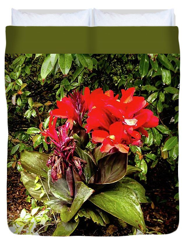 Canna Lily Cannova Bronze Scarlet Duvet Cover For Sale