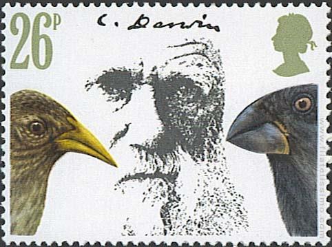 Centenario de la muerte de Charles Darwin. Pájaros.