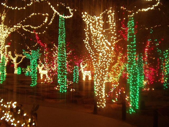 Christmas Light Show at Ethel M Cactus Garden near Vegas