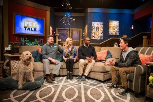 Nat Geo Wild's Pet Talk with Dr. Courtney Campbell, Dr. Tina Olivieri, Wildlife Expert David Mizejewski, and field reporter Andre Millan
