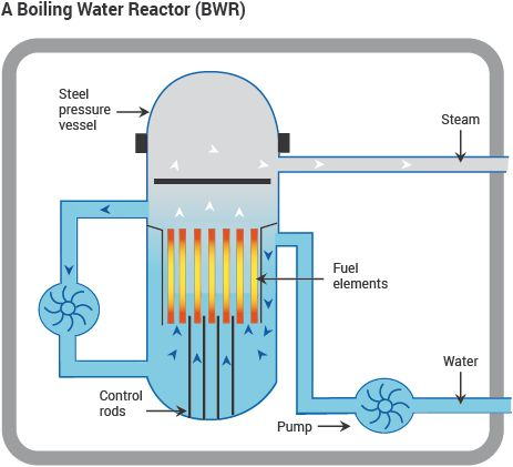 A Boiling Water Reactor (BWR) diagram nuclear energy Nuclear