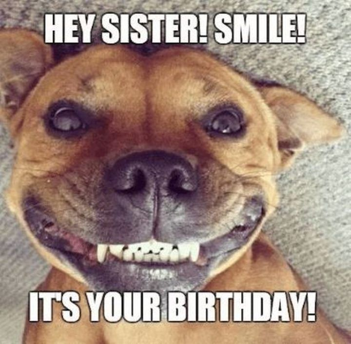 91 Happy Birthday Sister Memes For Your Sibling That Is Also A Friend Happy Birthday Sister Quotes Happy Birthday Sister Funny Sister Birthday Quotes Funny