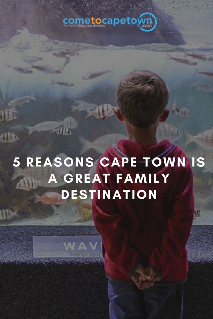 Here are our top 5 reasons that make Cape Town a great family destination.