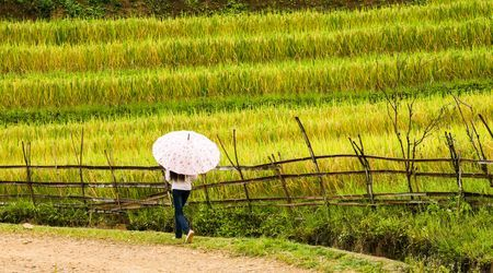 Y Ty, Lao Cai, Viet Nam Photo by Phạm Ngọc -- National Geographic Your Shot