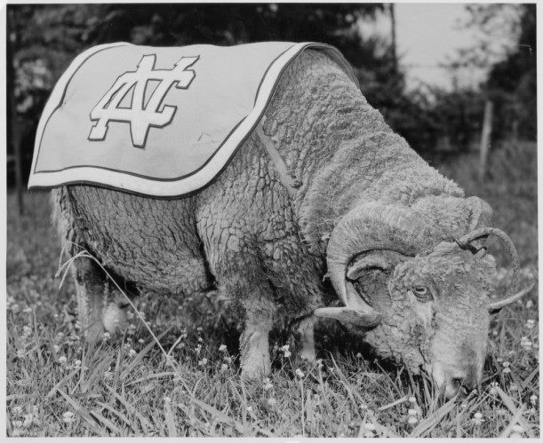 UNC rameses of long ago